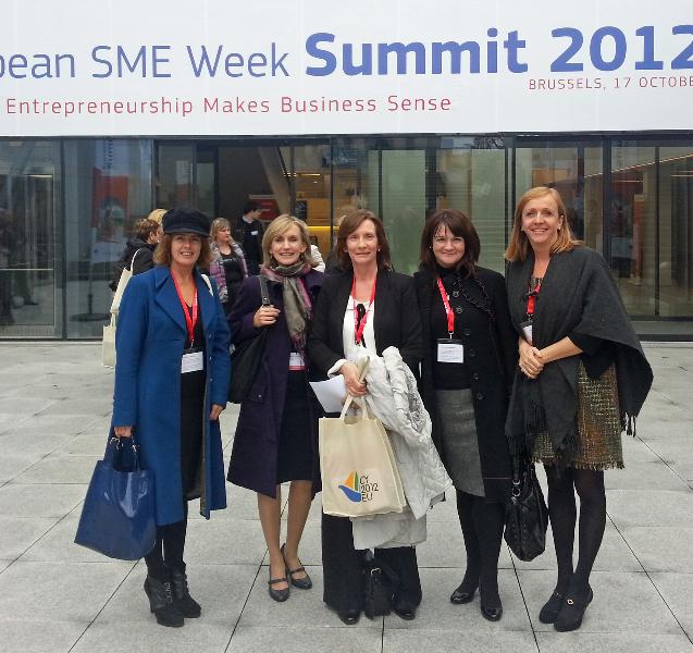fellow-mentors-sme-week